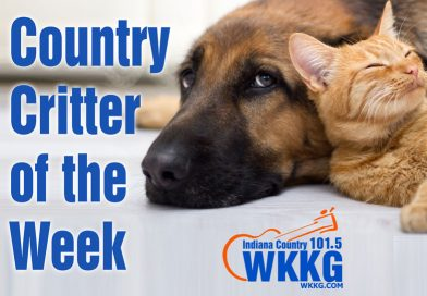Country Critter of the Week